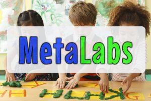MetaLabs 2016