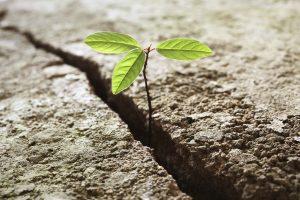 Siamo tutti resilienti!